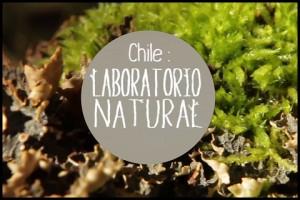 """Chile: Laboratorio natural"" vuelve a las pantallas de TVN"