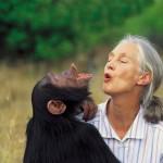 Jane Goodall: Ciencia y tecnología al servicio de la Conservación