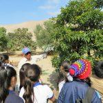 Más de 100 estudiantes participaron en Taller de Plantas Nativas en Arica