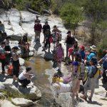 Innovar desde la naturaleza: el sello del último campamento de ciencias para profesores de todo Chile