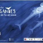 Libro ilustrado infantil invita a conocer las grandes ballenas del sur de Chile