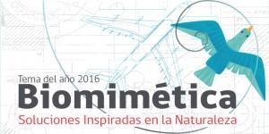 Biomimética: Soluciones inspiradas en la naturaleza