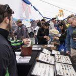 Fiesta de la Ciencia y la Tecnología 2017 finalizó con masiva concurrencia