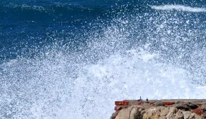 Charla entregó claves sobre cómo reaccionar ante marejadas y tsunamis