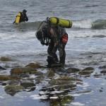 Nuevo estudio genético revela una desconocida diversidad de algas en Magallanes y la Antártica