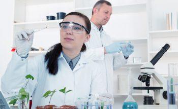 Fondecyt adjudica Concurso de Iniciación con  incremento en número de proyectos seleccionados