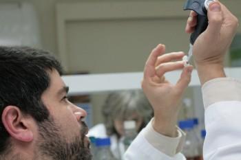 Fondecyt abre postulaciones a Proyectos de Iniciación en Investigación