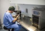 Fondecyt adjudica 310 nuevos proyectos de Postdoctorado