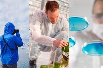 281 investigadores realizarán sus postdoctorados con financiamiento de Fondecyt