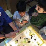 Una mejor Educación Parvularia: niñas y niños ciudadanos desde el jardín infantil