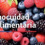 CONICYT da a conocer resultados del Primer Concurso de Inocuidad y Calidad Alimentaria