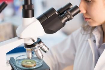 Alta participación de investigadoras en XII Concurso de Investigación y Desarrollo en Salud