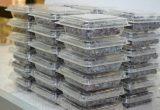 UDT desarrollará nuevos proyectos sobre plásticos biodegradables