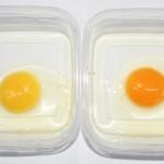 Cambio en la coloración de la yema del huevo por efecto de una mayor depositación de carotenoides presentes en la dieta prototipo (derecha), comparado con la dieta control (izquierda).