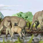 Investigador del CIEP publica estudio sobre la paleofauna sudamericana en Revista Nature