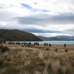 CEQUA recorre senderos de montaña en el Parque Nacional Torres del Paine