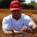 Diseñan cultivo resistente a la sequía y más productivo