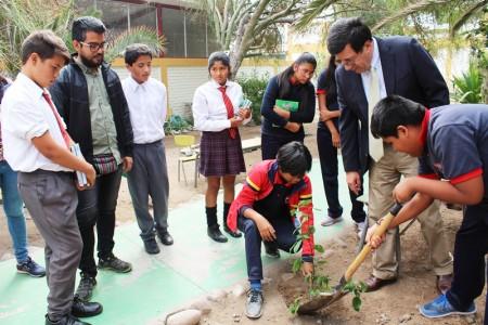 Finalización Taller de Plantas Nativas